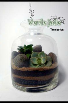 Terrarios DESERT Para mas información visitá nuestra web: www.VerdeJade.com Consultas: eve@verdejade.com Facebook: https://www.facebook.com/TerrariosVerdeJade