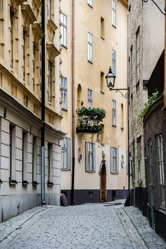 From fine dining and cocktails to freshly baked breads and cinnamon rolls, in Sweden's winter, Stockholm shines.
