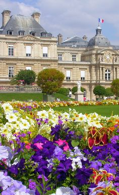 Travel Europe and visit Paris. #travel #awesome #europe Visit www.hot-lyts.com to see more background images