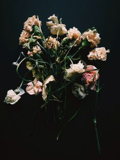 Dead Flowers Vsco Grid, Flower Aesthetic, Sad Girl, Showcase Design, What Is Life About, Art Inspo, Photoshoot, Plants, Pictures