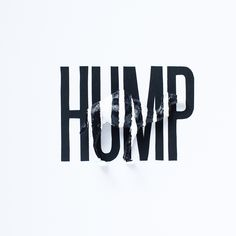 Camelflage: Hump (prints now available)