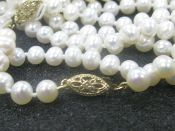 Single strand Cultured White Freshwater Pearls