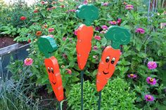 Hey, I found this really awesome Etsy listing at http://www.etsy.com/listing/154056510/carrot-garden-personality-wooden-plant