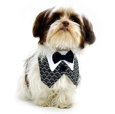 product thumbnail for Black/White Art Deco Vest w/Black Bowtie