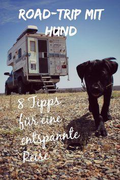 #unterwegsmithund #hund #reisen #tipps #hundereisen #labrador #roadtrip #autoreisen #zuhauseaufreisen