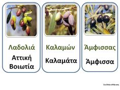 Olive Tree, School Projects, Fruit, Vegetables, Babys, Greece, Crafts, Autumn, Search