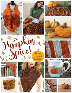 Pumpkin Spice! 12 Fabulous and Free Crochet Patterns...roundup on Fiber Flux