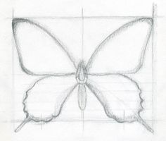 Great site for learning to draw.  Easy to Draw Butterflies | How To Draw A Butterfly