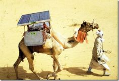 Solar Camel, from the GIZ Health Sector Programme in Kenya - a lovely picture, but not related to the implementation of mobile phone technology in Kenya