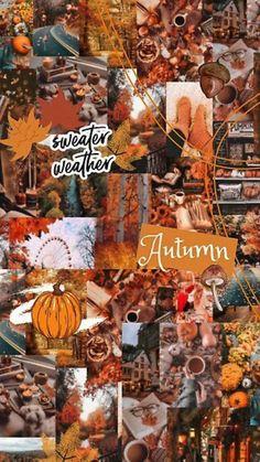 Cute Seasonal wallpaper