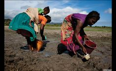 Women collecting drinking water in south eastern Madagascar by Ed Kashi