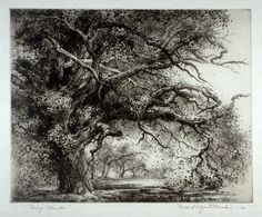 Among Branches Mildred Bryant Brooks etching