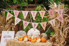 """""""Little Pumpkin"""" bunting banner and fall decor from """"Little Pumpkin"""" Fall Picnic Birthday Party at Kara's Party Ideas. Fall First Birthday, Fall 1st Birthdays, Pumpkin 1st Birthdays, Pumpkin First Birthday, Happy Birthday, Pumpkin Birthday Parties, Picnic Birthday, Boy Birthday Parties, Girl Birthday Themes"""