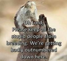 Oh Lord, Please keep all the stupid people from breeding. We're getting badly outnumbered down here.