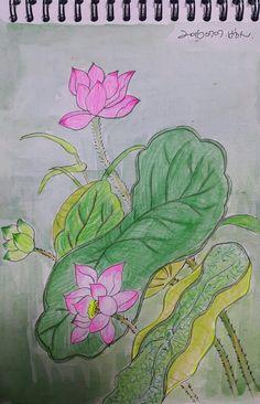 연꽃그리기