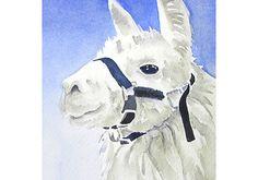 Items similar to White Llama Animal Artwork Original Watercolor on Etsy Watercolor Artwork, Watercolor Paper, Llama Arts, Art Walk, Online Art Gallery, Lovers Art, Art Drawings, Moose Art, Original Paintings