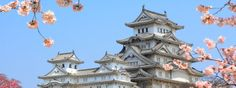 When it comes to the top What to do in Japan, including Kyoto, Tokyo and beyond, most travelers have a list of major sights, shrines, parks, gardens and museums to explore. Every good #holiday needs some quirky tales to tell on your return home and if you visit #Japan then rest assured it delivers more than its fair share.