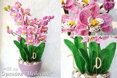 (ړ יי) Maria Sipatova - perline. orchidee | bene