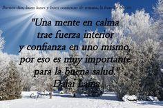 Dalai Lama, No Me Importa, Inner Strength, Good Monday, Confidence, Calm, Thoughts