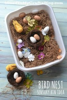A spring themed activity that's great for curious minds: Bird Nest Sensory Bin Idea Toddler Sensory Bins, Sensory Tubs, Sensory Boxes, Sensory Activities, Sensory Play, Sensory Diet, Motor Activities, Toddler Activities, Fall Sensory Bin