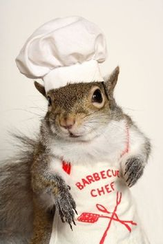 Love his little hat and apron.