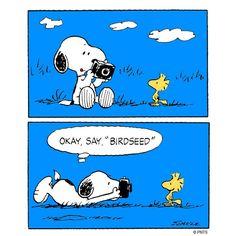 """Say """"birdseed!"""""""