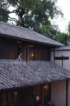 民宿院子 盘点中国最美的50家