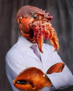 """Googled """"Zoidberg"""" to show a friend who he was...  Here's an IRL picture."""