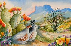 California Quail ~ by Barbara Ann Spencer Jump Watercolor Cactus, Watercolor Animals, Watercolor Paintings, Watercolors, Mini Paintings, Desert Art, Desert Life, Southwest Art, Hippie Art