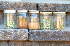 DIY Spice Mix: Onion Soup, Chili Spice Mix, Ranch Dressing, Herbs de Provence, and Guacamole Spice Mix. Note: Add Dill to the Ranch dressing.