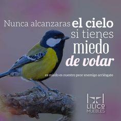 ¡Hay que alcanzar nuestros sueños!  http://www.lilicomuebles.com