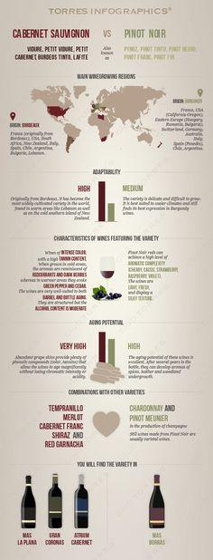 Infography: Cabernet Sauvignon Vs Pinot Noir Wine