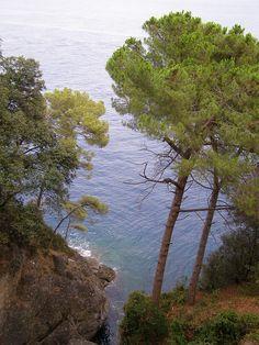 Portofino, Liguria, Italy Italy, River, Places, Outdoor, Outdoors, Italia, Rivers, Outdoor Games, Lugares