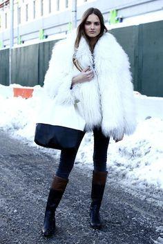 Inverno~Winter White Fox on Pinterest   637 Pins
