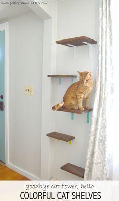 Repisas para gatos