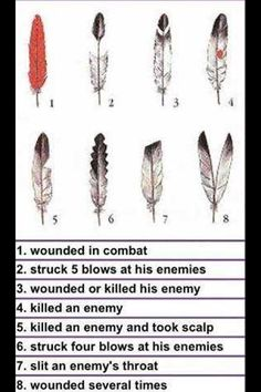 American Indian feather meanings