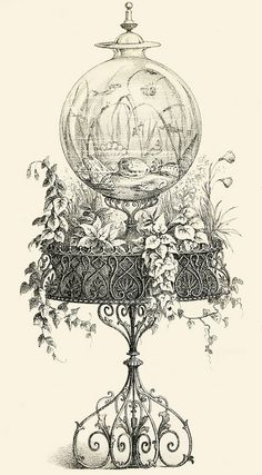 Fishbowl, 1856. #Victorian #vintage #illustrations