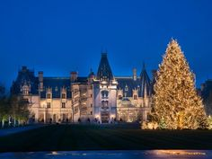 The holiday decorating experts at HGTV.com share a photo tour of Biltmore House decorated for the holidays plus helpful how-to project videos so you can recreate the look of a Victorian Christmas in your home.