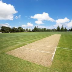 Cricket pitch in the sports park - background with copy space.