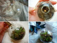 Christmas Ornament Terrarium