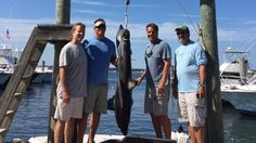 New York governor in hot water over shark photosCNN anchor Chris Cuomo (to the left of shark with hand on shark) and New York governor Andrew Cuomo (to the right of shark with hand on fin) pose with friends and a thresher shark.  Image: Gov. Cuomo/Twitter  By Marcus Gilmer2016-08-29 23:00:37 UTC  New York governor Andrew Cuomo and his brother CNN anchor Chris Cuomo are in hot water over their catch of a thresher shark during a fishing expedition over the weekend.  The 154.5-pound shark was…