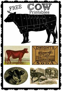 Cow printables