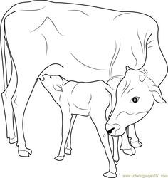 Indian Cow with Calf coloring page - Free Printable Coloring Pages