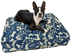 Molly Mutt Perfect Afternoon Dog Duvet  -  Blue