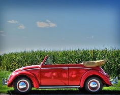 One of My dream cars. red convertible bug