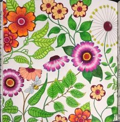 Johanna Basford Secret garden. colored with koh-i-noor mondeluz
