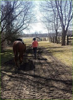 My lifelong obsession with horses didn't quite work out the way I planned. Read about it at stillpoint: http://kannonsgarden.blogspot.ca/2015/08/wishes-and-horses.html