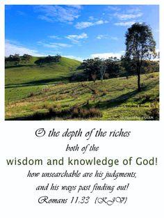 King James Bible, Scripture Verses, Romans, Past, Country Roads, Wisdom, Past Tense, Bible Verses, Bible Scripture Quotes