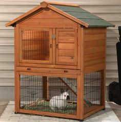 how to connect run from bunny house to yard