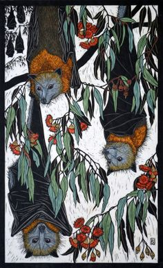 Grey-Headed Flying Fox 70.5 x 43 cm Edition of 50 Hand coloured linocut on handmade Japanese paper $1,200